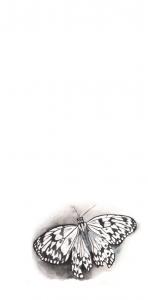 A 5x10 Fjäril stämpel